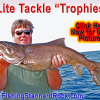 "Fishing the ""Rock"" – Click Below for Much More…"
