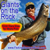 """Trophy """"Red Fin"""" Lake Trout on Light Tackle"""